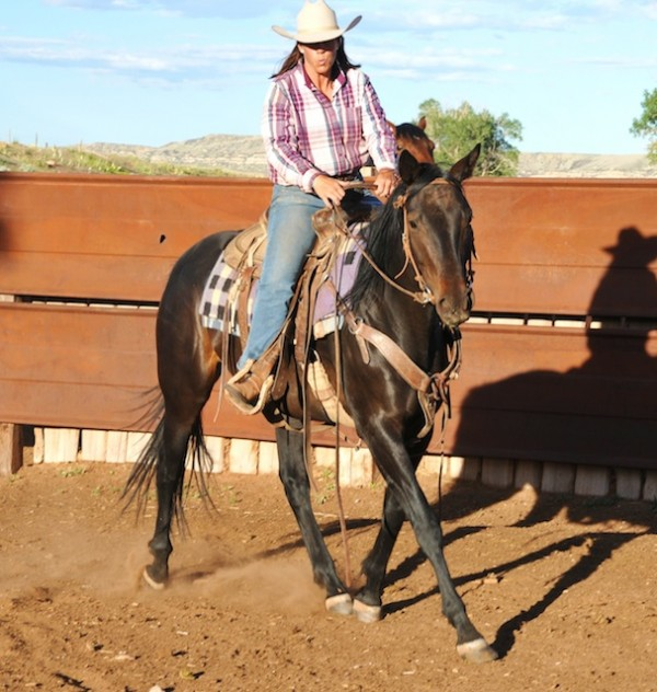 Gwen Shepperson, ranching, ranch life
